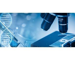 技术、科学系统项目