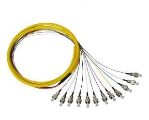 FC 12芯单模束状尾纤