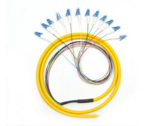 LC 12芯单模束状尾纤