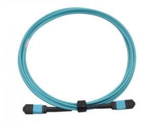 MPO(母头)-MPO(母头)12芯万兆光纤跳线
