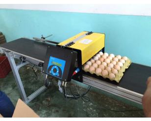 EC800鸡蛋喷码机