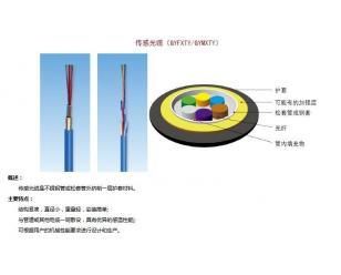 传感光缆(GYFXTY/GYMXTY)