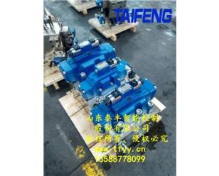 供应泰丰YN32-500HXBCV型插装阀双泵