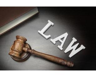 中华人民共和国刑法修正案(九)